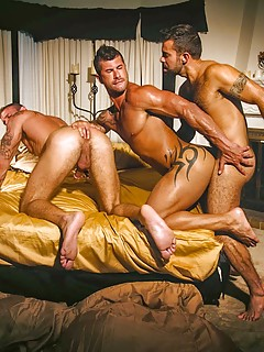 Gay Group Sex Pics
